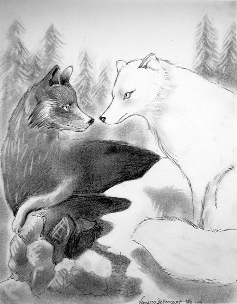fox traditional art drawing myth pencil