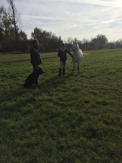 Foto: Martina Scheising - 4.11.17 - Stefan mit Hund, Martina mit Pferd
