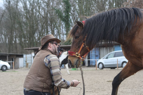 Foto: Raimund Kniffki (mit meinem Pferd Pedro) 28.10.2016