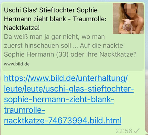 Screenshot: bild.de, 31.12.2020, Sophie Hermann und ihre Nacktkatze, eine Frau hat Sehnsucht nach Aufmerksamkeit