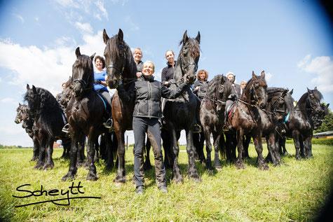 So viele Pferde auf einem Bild sind selbst für mich eine tolle Ausnahme! :)