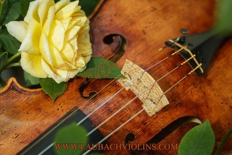 Скрипичная мастерская Laubach использует лучшие МИ- струны Pirastro для своих мастеровых скрипок.