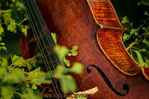 Master cello