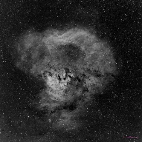 Nebulosa NGC7822 Calavera de Simio