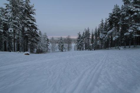 Firmenreise nach Schweden, Lappland an der Polarkreis