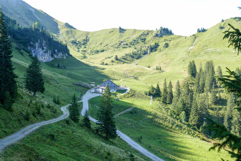 Usseralpe in 1665 m Höhe