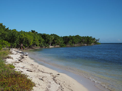 Rose Cay