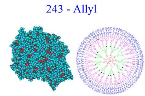 Dendrimères ayant des propriétés de micelles moléculaires pour applications biomédicales