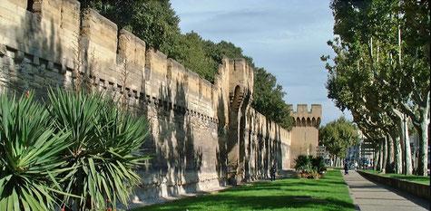 Avignon Stadtmauern