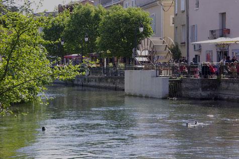 Die Ufer von der Sorgue für einen kleinen Spaziergang