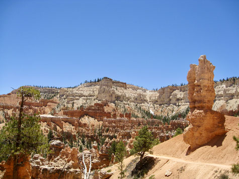 Der Blick von oben ist spektakulär, der Blick aus dem Canyon unglaublich.