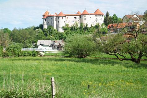 Burg Zuzemberk, Slowenien