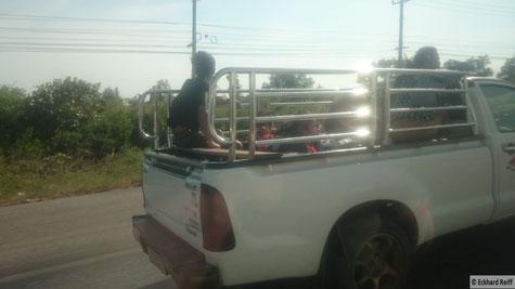 Sicherheit geht vor, der Käfig war nicht bei jedem voll besetzten Pick-Up