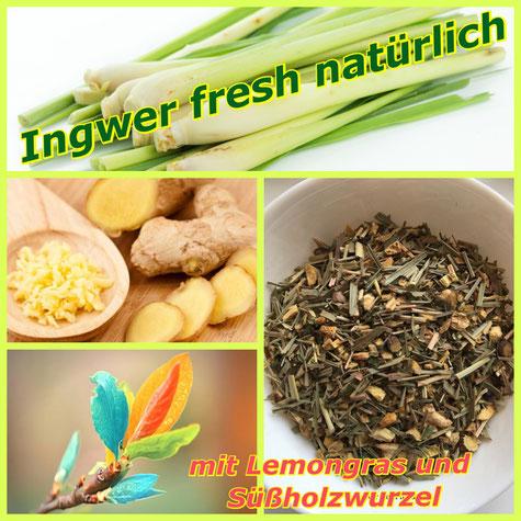 Ingwer fresh natürlich- Schleibrise- Tee Kappeln-Onlineshop
