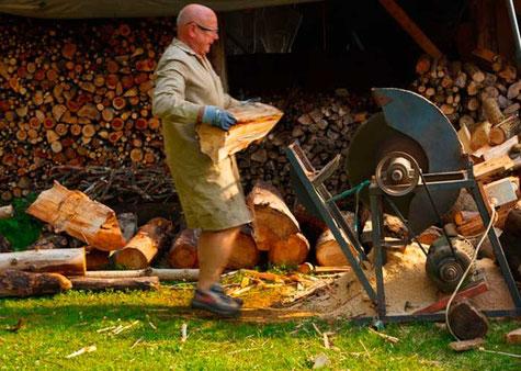 Bild: Erneuerbare Holzenergie