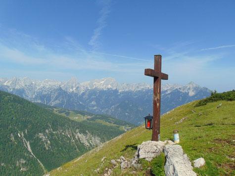 Gipfel die Wilde (Brennert) - nach Aufstieg über Wildenalm und Steyersbergerreith