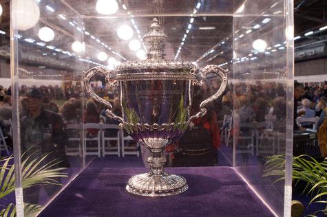 Best In Show Pokal, Foto: Ulf F. Baumann
