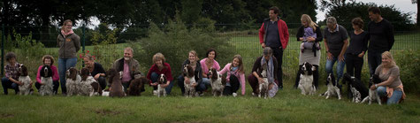 "Spaniels and owners ""vom Belauer See"", Kennel Meeting 2017, Photo: Oliver Marohn"