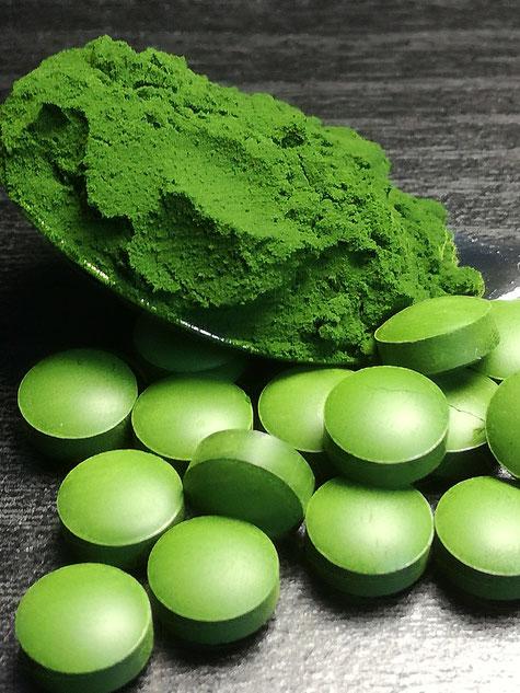 Cjlorella vulgaris, die Alge mit den Superkräften.