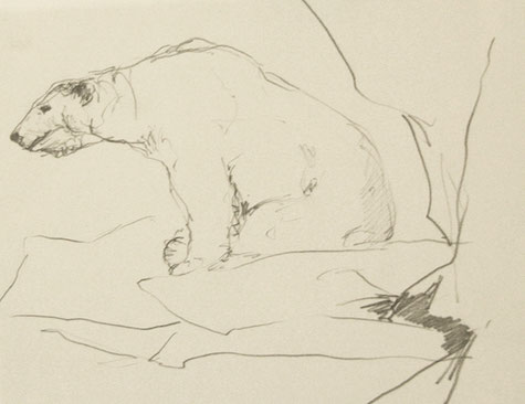 Eisbär, Skizze, Bleistift, Kunst, Tilmann Bohne, Holzsteinpapier