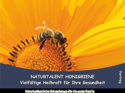 Ein Vortrag der Heilpraktikerin Bärbel Bröskamp über die Bienenheilkunde
