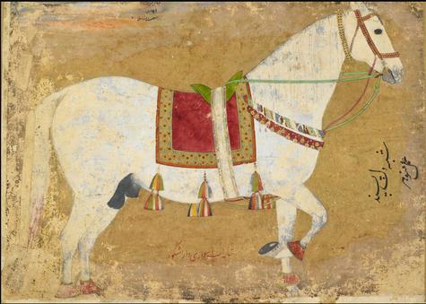 portrait-horse-dilpasand-dara-shikoh