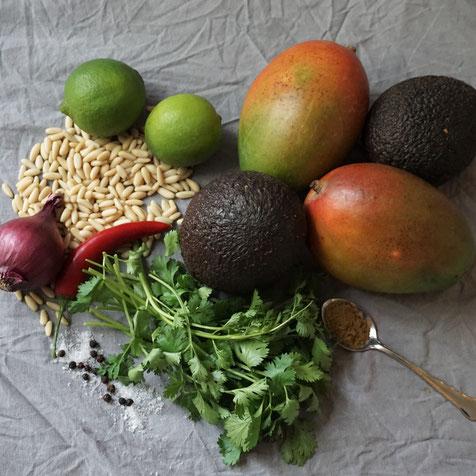 Mango-Avocado-Salsa . Sonne auf dem Teller!