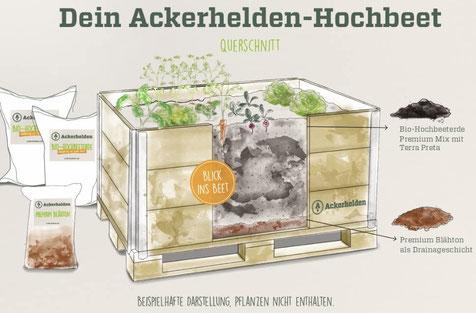 Ackerhelden Hochbeet aus biozertifiziertem Holz bei www.the-golden-rabbit.de