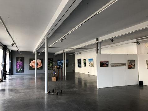Bilderausstellung Jürg Matthys, Galgenen, November 2018