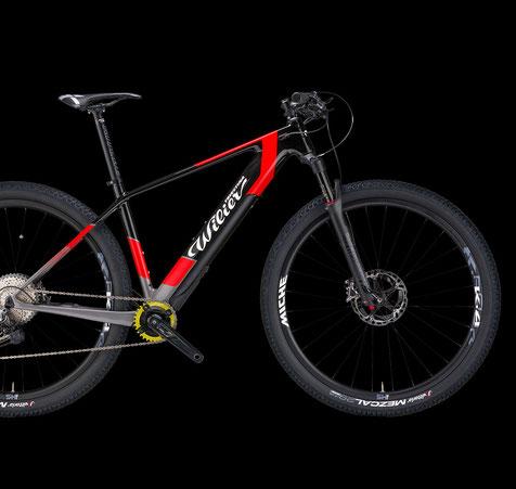Wilier 101X Hybrid Italian Cycle Experience