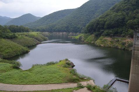 ダム周辺は、緑豊かな自然があふれる。