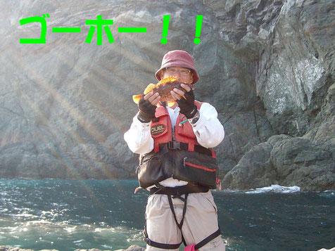 実はコレが今回の釣行の唯一の食べれる魚^^;