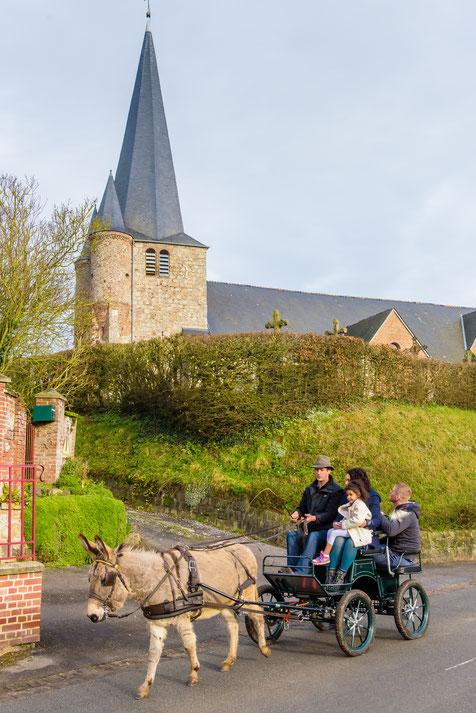 Balade en âne - départ aux Lavandières de Fontaine - Au pré de l'âne