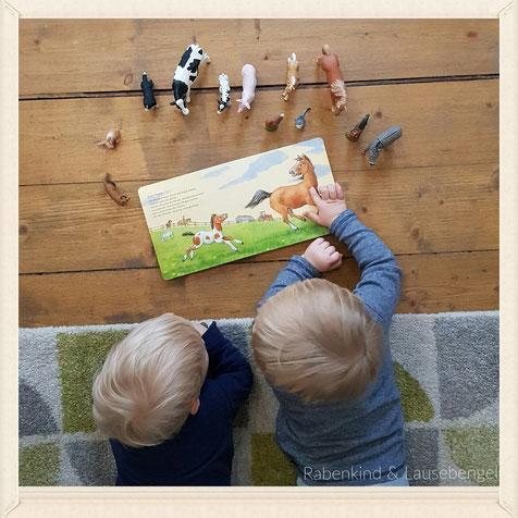 Gemeinsam Bücher anschauen und die passenden Bauernhof Schleichtiere dazu holen... so langsam beginnt das gemeinsame Spiel...