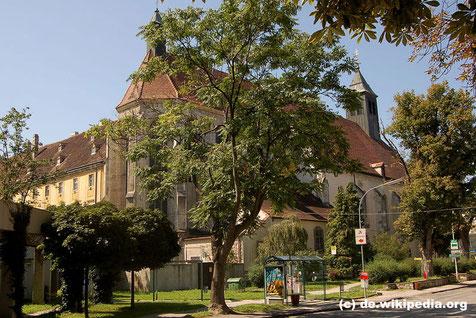 """Das Stift Neukloster stammt aus dem frühen Mittelalter. In der """"Wunderkammer""""  befindet sich eine Sammlung von mehr als 4.000 Kunstobjekten."""