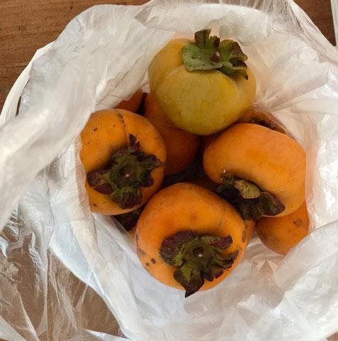 """10月に台風、、なんかもう珍しくもない感じになりましたね、。 子供世代には違和感無いんだろうな~、、、さて柿をいただいた♪ 庭で採れた柿らしいんですけど、成り物って家庭菜園とは違い""""食べたろ感""""が薄くナチュラルな感じがいいんすよね~♡ 実はうちの庭にも柑橘系の樹を植えたいと、、、ライムかスダチかレモンで思案中。。。 *家庭菜園もやってます!w"""