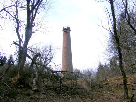 Grand Wintersberg après le passage de la tempête Xynthia