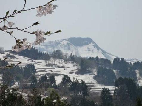 菱ヶ岳の「馬形」