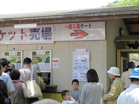 入場料:大人¥1600 小人¥800 夜間の部:大人¥1400 小人¥700