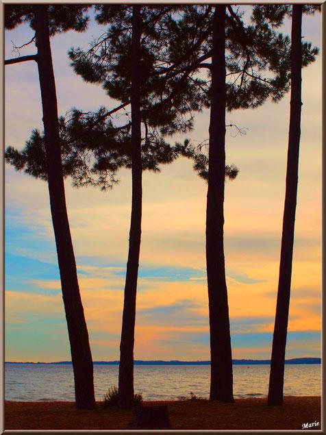 Coucher de soleil sur le Lac de Cazaux (La Teste de Buch, Bassin d'Arcachon)