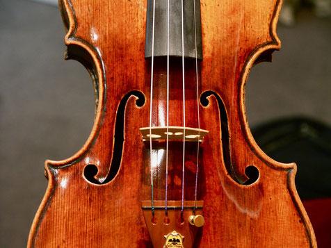 струны для скрипки IL Cannone  купить