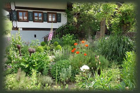 Gewürze und Kräuter stehen direkt vor dem Brunnenhof im Kräutergarten.