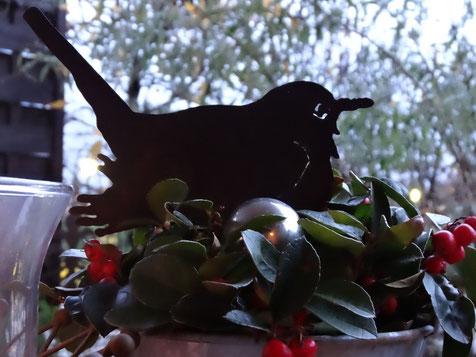 Bild: Winterstimmung, eine Amsel sitzt zwischen grünen Blättern und nascht rote Beeren