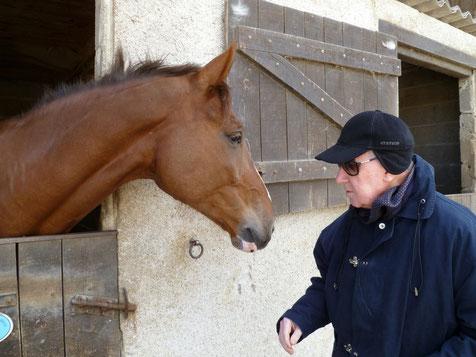 La rencontre avec le cheval.