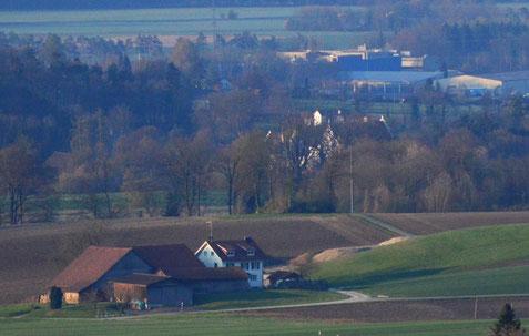 heute sieht man das Schloss vom Napoleonturm aus kaum mehr