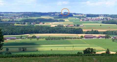 """der """"Blick zurück"""" zum Napoleonturm von Ottoberg aus"""