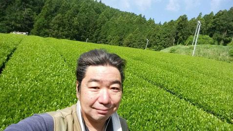 川根 静岡県 有機栽培茶 樽脇園 普通煎茶 無農薬 無化学肥料 オーガニック 山のお茶 樽脇靖明