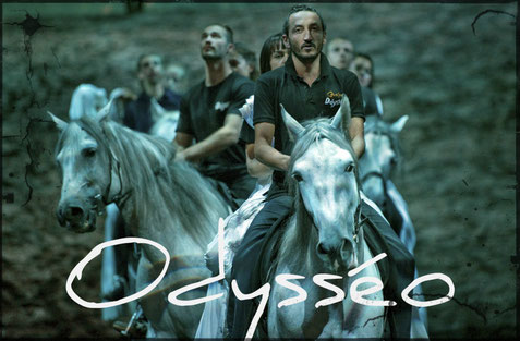 odysseo spectacle equestre