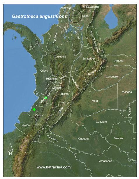Distribución en Colombia.
