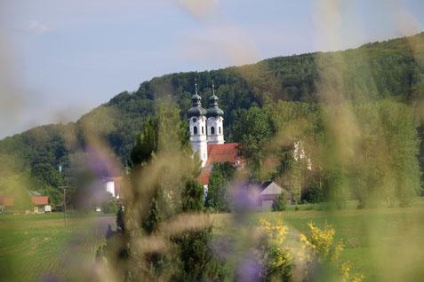 Hildegard Jakob - Logotherapie : Zwiefalten Münster in der Natur